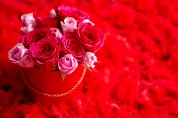 Pink roses packed in box and placed on red feathers background with copy space. Valentines day or Romantic concept.