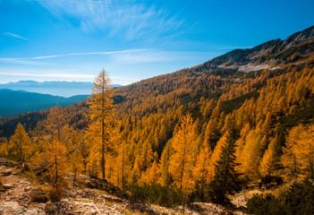 autumn alpine landscape