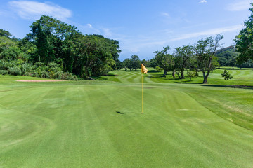 Golf Hole Fairway Trees Green Scenic Course