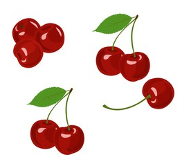 Cherry vector illustration. Cherry collection on white background.