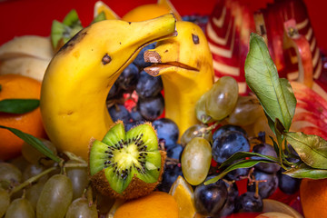 Fresh fruit salad made of banana, kiwi, and grapes pieces, creatively made two dolphins