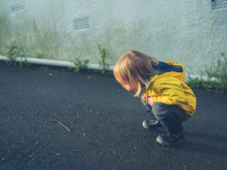 Little toddler looking at worm in the street