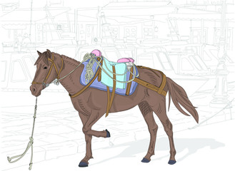Hand drawn illustration. On the Greek Island of Hydra, where no cars are allowed, a beautiful mule waits to give tourists a ride.