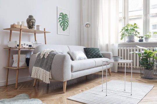 Stylish scandinavian interior with design sofa, poster, plants, bookstand, coffee table, cozy blanket and mock up frames. White background walls, brown wooden parquet and modern lamp.