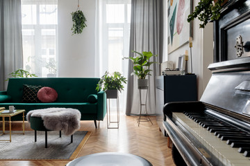 Bright and sunny luxury home interior with design green velvet sofa,  armchair, navy commode, pouf and accessroies. Big windows. A lot of plants. Stylish decor of living room. View from the piano.
