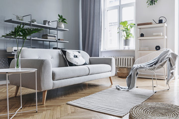 Modern and bright nordic living room with design sofa with pillow, coffee table, plants, stylish accessories and bookstand on the grey wall. Brown wooden parquet. Concept of minimalistic interior.
