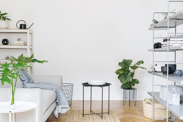 Modern nordic home interior with grey bookstand with accessories, design sofa, tropical plants, coffee table and  stylish furniture.  Empty white walls. Cozy space of living room. Brown wooden parquet