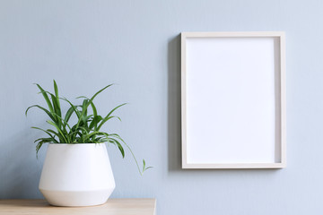 Minimalistic room interior with mock up photo frame on the brown wooden table with beautiful plant in design white pot. Grey walls. Stylish concept of mock up poster frame.