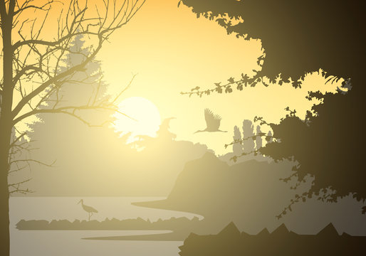 Realistic illustration of landscape and wetland with standing and flying bird and trees. Rising sun with beams on morning yellow orange sky, vector