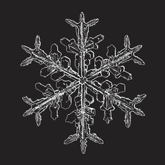 Snowflake isolated on black background. Vector illustration based on macro photo of real snow crystal: elegant stellar dendrite with hexagonal symmetry, complex ornate shape and intricate details.