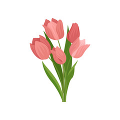 Cute pink tulips with green leaves. Beautiful spring bouquet. Nature theme. Flat vector illustration