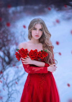 Incredible blonde girl with blue eyes, look into the camera. Healthy long hair. Countess Batory holds an armful of scarlet roses at her breast. Background winter landscape and falling flower petals.
