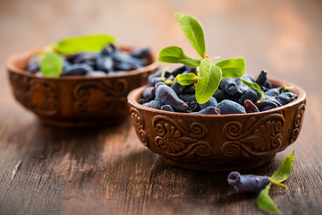 Delicious and healthy honeyberry (lonicera)