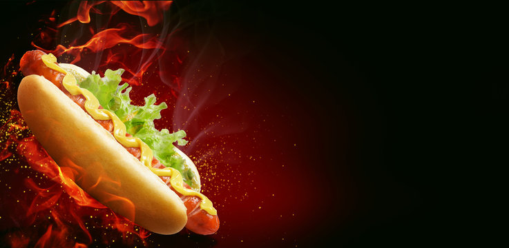 fresh american hot dog with mustard