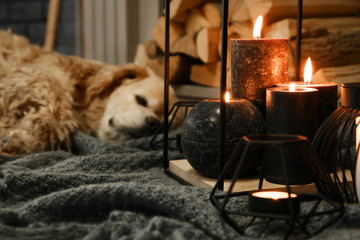 Beautiful burning candles with sleeping dog near fireplace