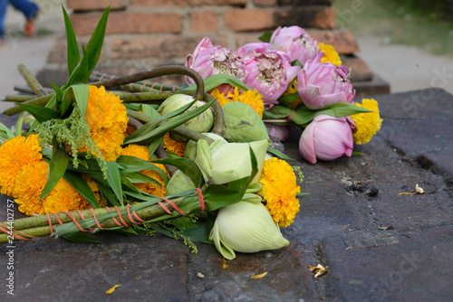 Ofrendas De Flores De Loto Nelumbo Nucifera De Colores Símbolo Del