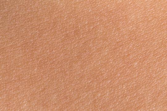 Woman's skin