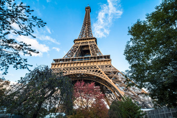 View on Eiffel tower from below in the evening, Paris