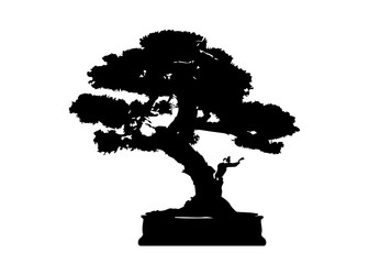 Japanese bonsai tree , plant silhouette icons on white background, Black silhouette of bonsai. Detailed image. Vector isolated