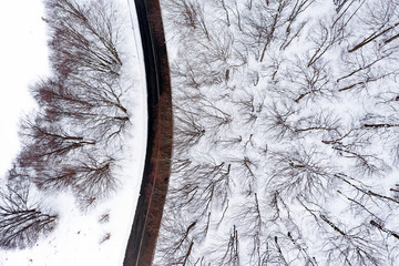 Aerial view of a road surrounded by pine trees forest and white snow. National Park of Abruzzo, Lazio and Molise, Italy.