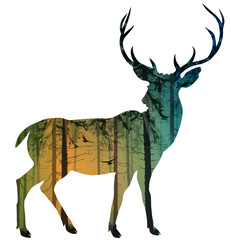 Fototapete - Silhouette of an elegant deer. Inside is a pine forest with flying birds. Isolated object, vector illustration.
