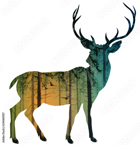 Wall mural Silhouette of an elegant deer. Inside is a pine forest with flying birds. Isolated object, vector illustration.