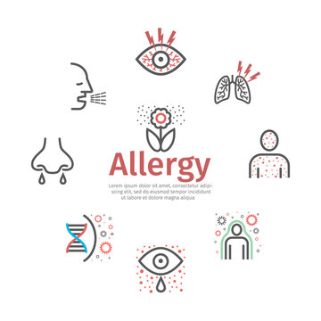 Allergy banner, symptoms line icons infographic. Vector sign for web graphic.