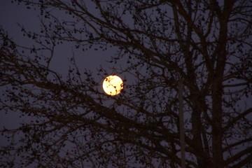 Pleine lune bien brillante