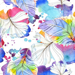 Colorful bird feather from wing isolated. Watercolour drawing fashion aquarelle isolated. Seamless background pattern.