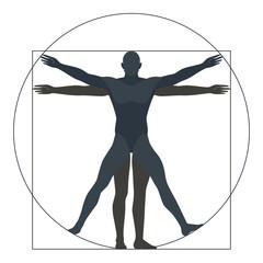 Vitruvian man, silhouette. the modern form, vector