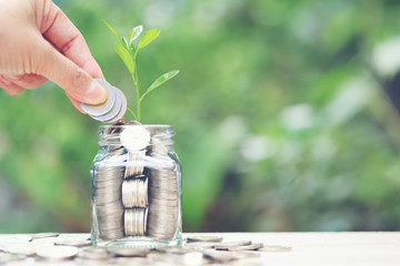 investment and business concept, Woman hand putting a coin into glass bottle with plant growing on natural green background