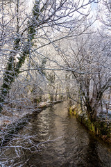 river Wuerm in munich with snow covered trees and frost