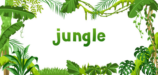 Background with jungle plants.
