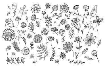 Set of cute hand drawn black ink flowers and herbs, plants. Big vector collection of floral graphic elements for pattern design, greeting card decoration, logo