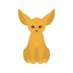 Cute little fennec fox with big ears