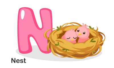 N for Nest
