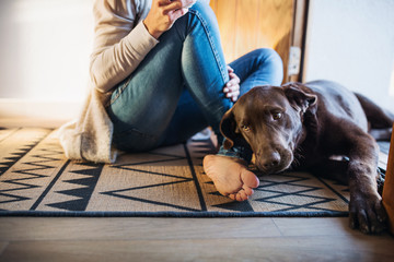 A midsection of young woman with a dog sitting indoors on the floor at home.