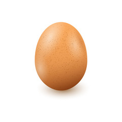 Realistic egg on white background with shadow. Vector in EPS10.