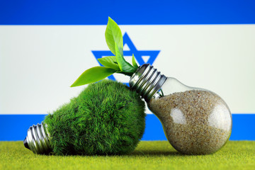 Green eco light bulb with grass, plant growing inside the light bulb, and Israel Flag. Renewable energy. Electricity prices, energy saving in the household.