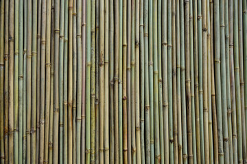 Full frame view of several vertical straight bamboo sticks and textures.