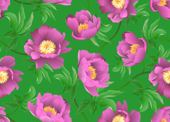 Pink peonies on green background. Vector seamless floral pattern.