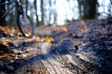 Mountain bike tyre tracks