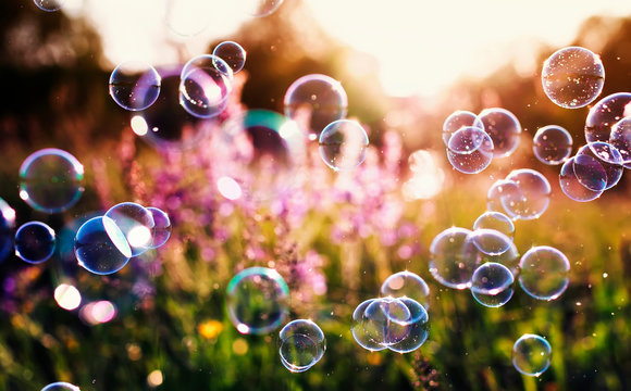 beautiful natural background with summer clear green meadow with pink flowers and soap bubbles brightly shimmer and fly in the air at lilac sunset