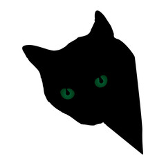 Animal-Black Cat with Green Eyes