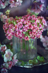 Lovely bunch of flowers. Pink Kalanchoe flowers on the table.