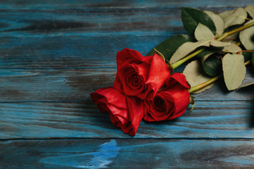 bouquet of red roses on a blue wooden background
