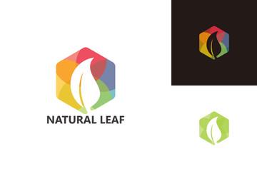 Natural Leaf Logo Template Design Vector, Emblem, Design Concept, Creative Symbol, Icon