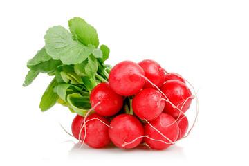 Fototapeta radishes on white obraz