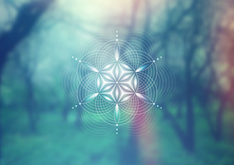 Vector template; Spiritual sacred geometry; Abstract geometric shape based on ancient symbol -