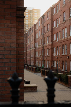 Row of London houses
